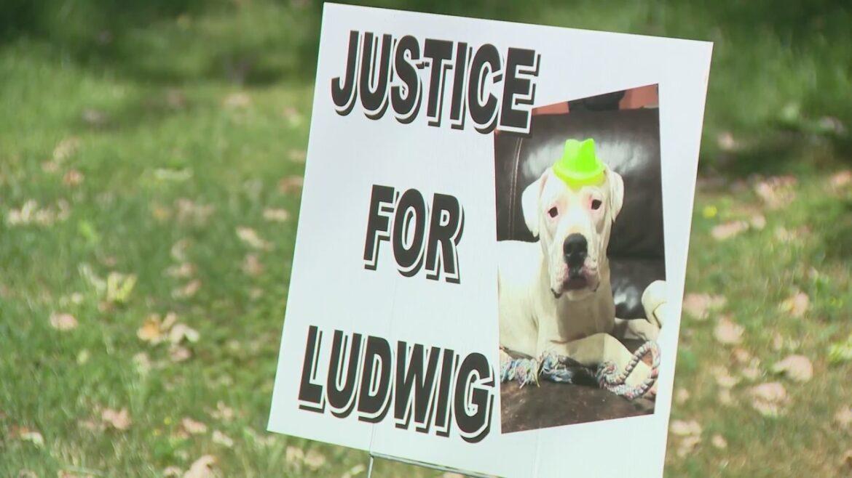 Ludwig did get justice!